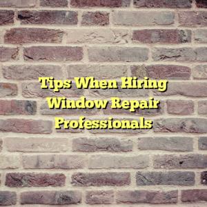 Tips When Hiring Window Repair Professionals