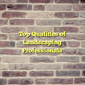 Top Qualities of Landscaping Professionals